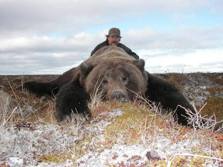 bear12-56