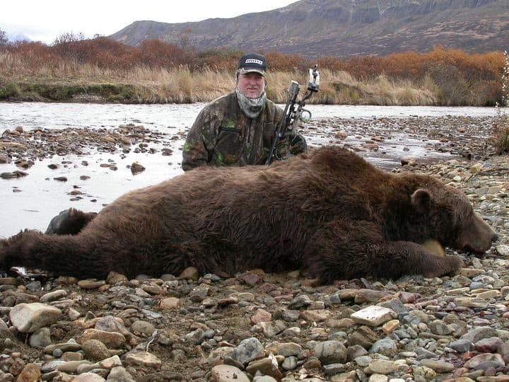 bear31-75
